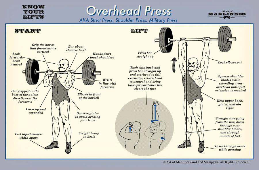Top 5 Upper Body Pushing Exercises | Primal Patterns